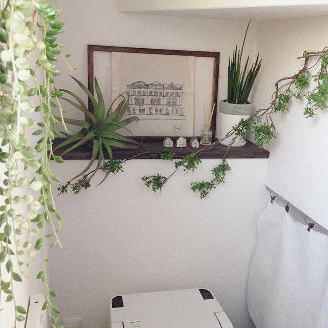 グリーンやお花で癒しのスペースに