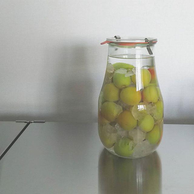 WECK ガラス容器7