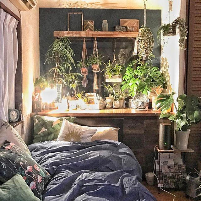寝室 グリーン 観葉植物