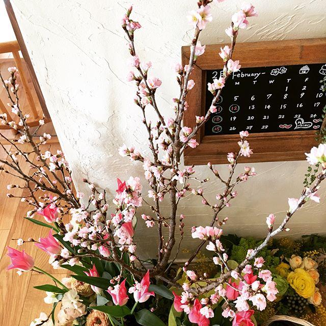 桜の木や花を使ってインテリアコーディネート3