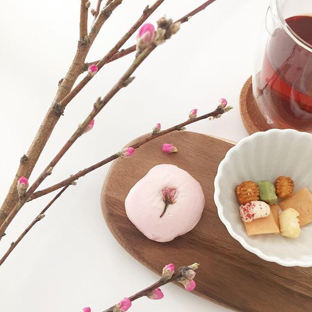カラフルな和菓子と一緒に