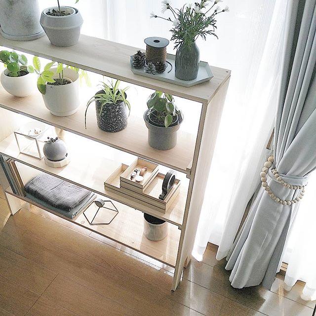 家具DIY ディスプレイ棚 観葉植物