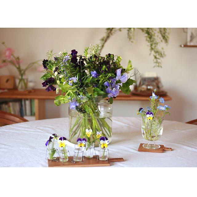 ビオラ ディスプレイアイディア ブーケ 花瓶