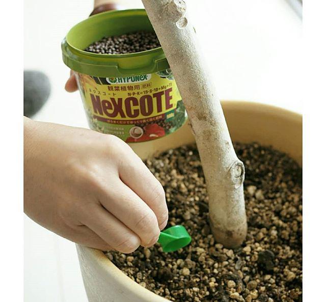 堆肥の作り方