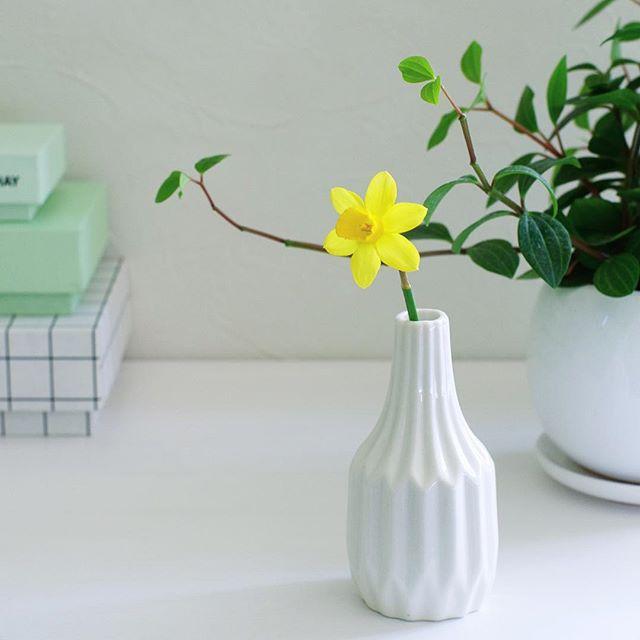 黄色 花 インテリア3
