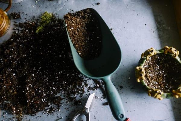 腐葉土の特徴
