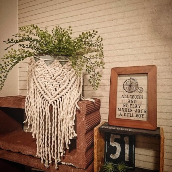 植物 花 鉢15
