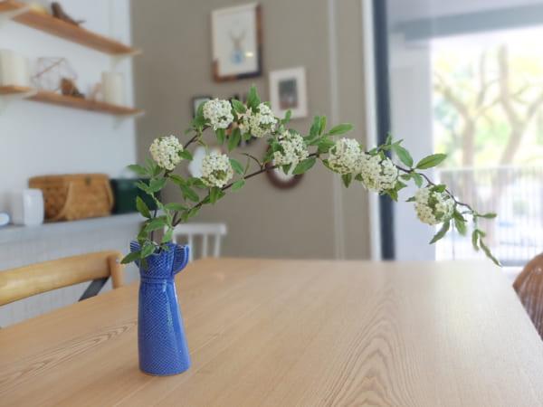 植物 花 フラワーベース1