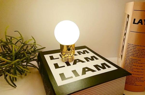 おしゃれな電球型LEDライト(キャンドゥ)