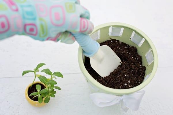 腐葉土の発酵中にはどうしたらいいか