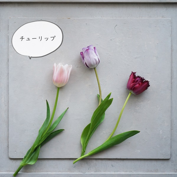 花 贈り物3