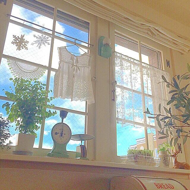 窓際インテリア8