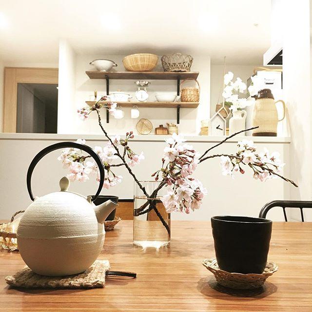 桜 テーブルコーディネート 南部鉄器