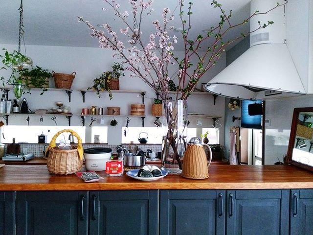 キッチン 桜