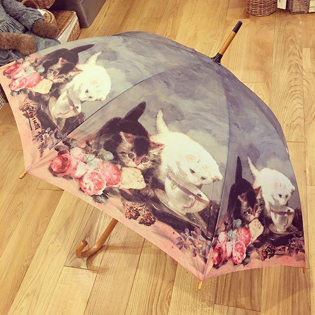アート傘 猫