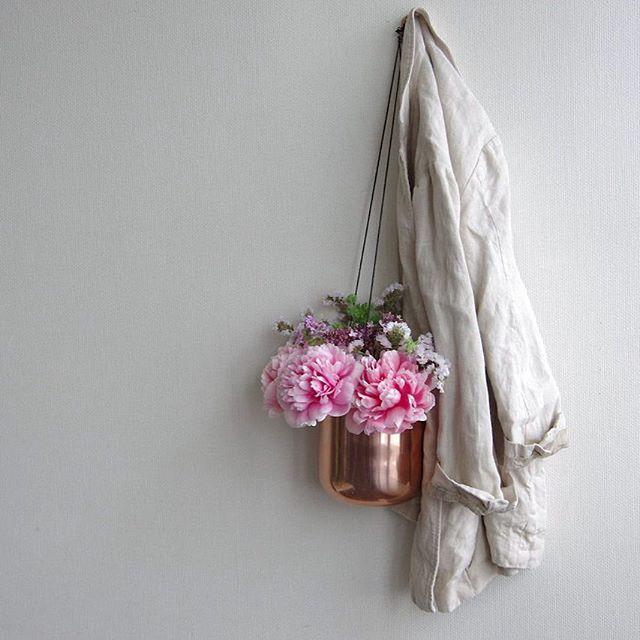 芍薬のカラーバリエーション2.ピンク
