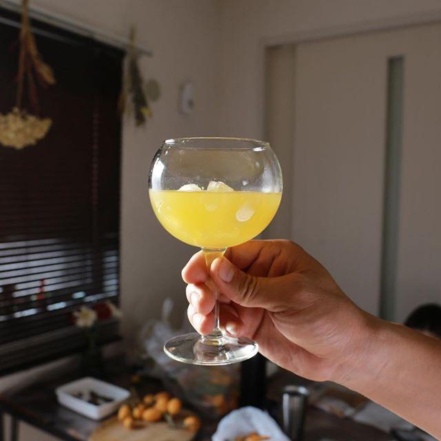 ワイングラス ジュース