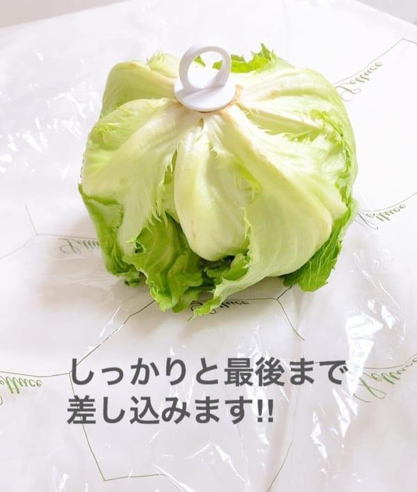 野菜フレッシュキーパー2