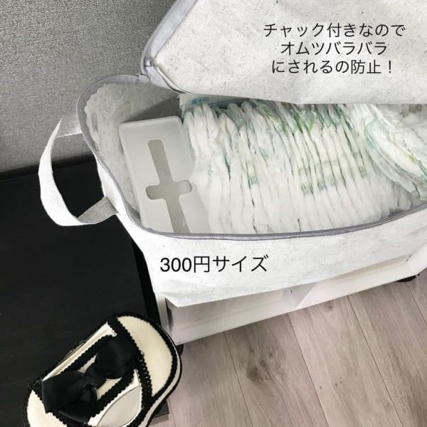 チャック付きの収納BOX(ダイソー)