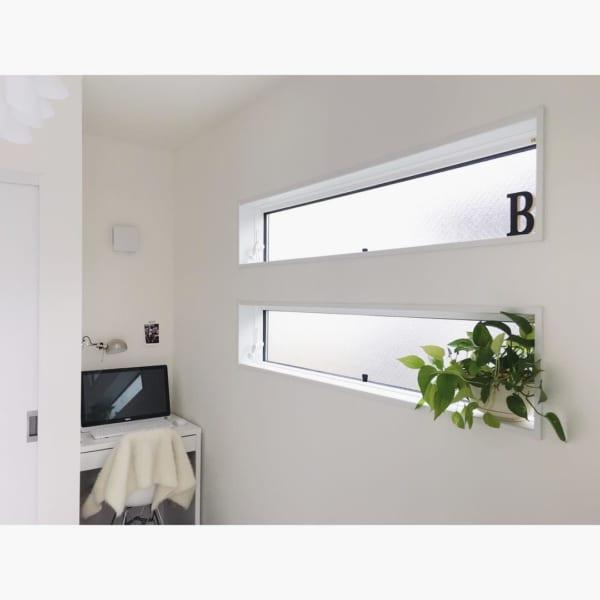 窓・窓際インテリア 観葉植物2