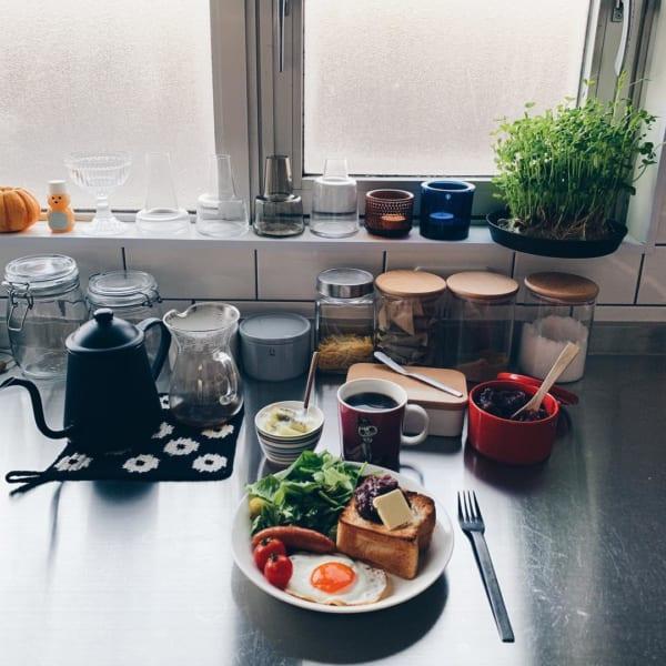 キッチン菜園3