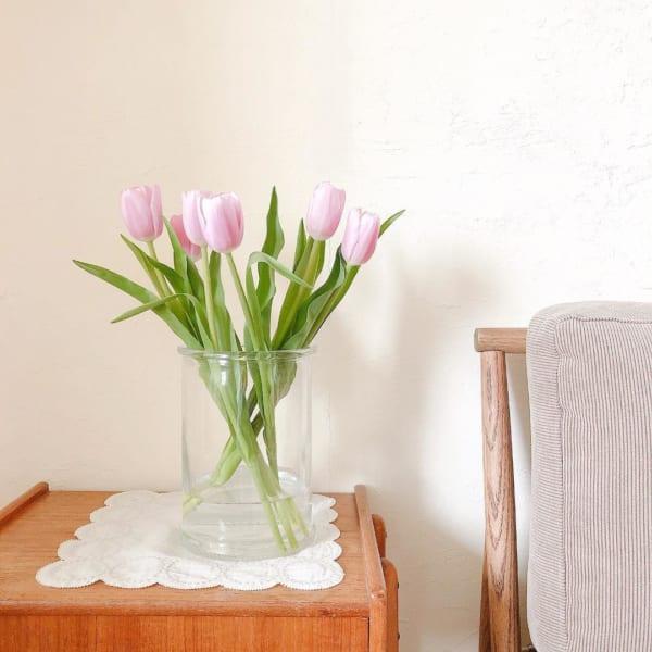 植物のある素敵なお部屋3