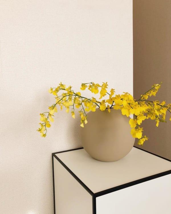 植物のある素敵なお部屋8