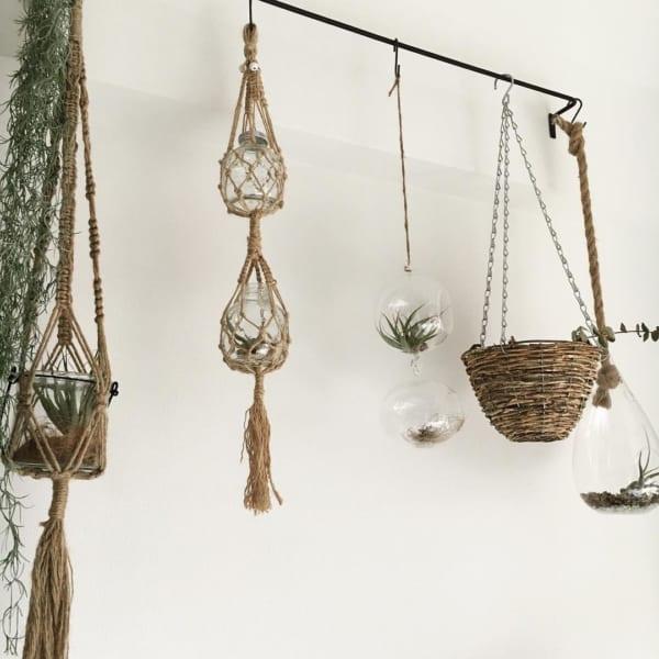 ♪オシャレな観葉植物の飾り方4
