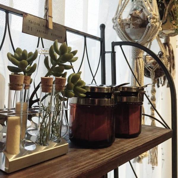 オシャレな観葉植物の飾り方16