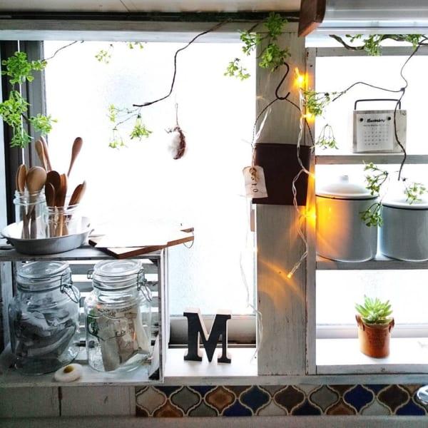 窓・窓際インテリア 観葉植物5