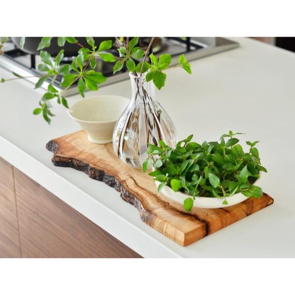 キッチン菜園8