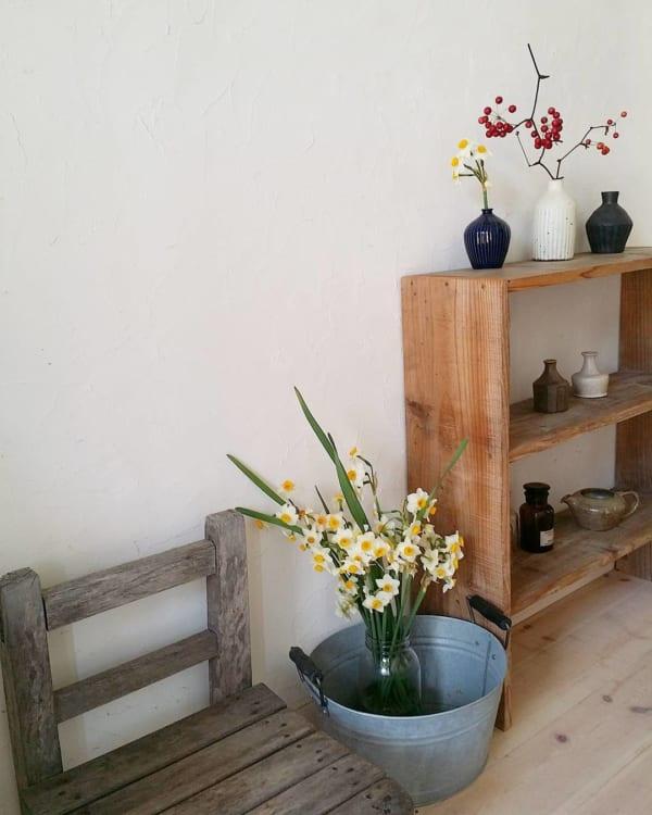 観葉植物 春 インダストリアル スイセン
