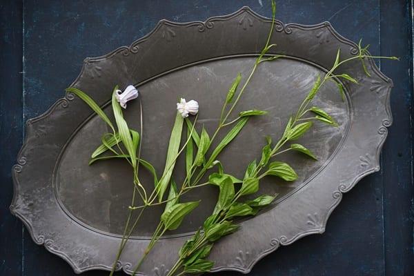 端午の節句 花飾り