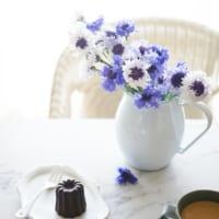 【連載】《ニトリ・IKEA》新生活にオススメな花瓶!使いやすいフラワーベースの選び方ポイント