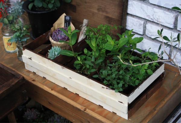 ガーデンボックス DIY7