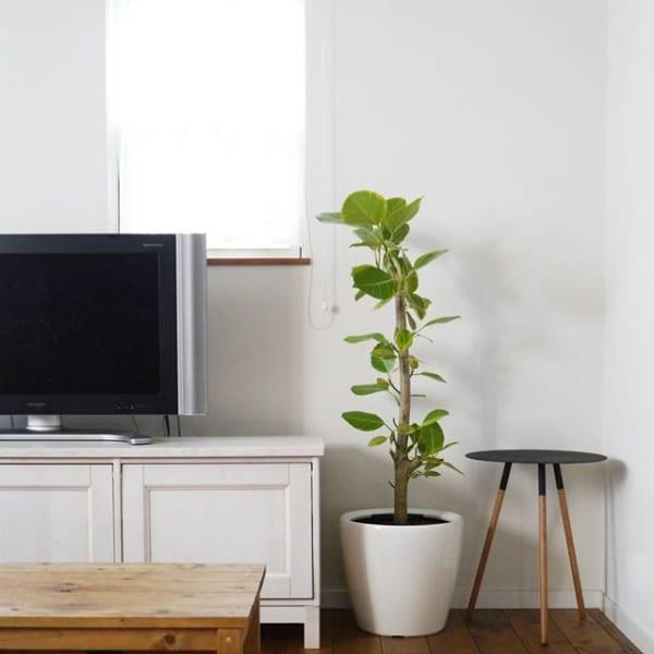 スタンダードなテレビボードは、インテリアになじむものをチョイス☆2