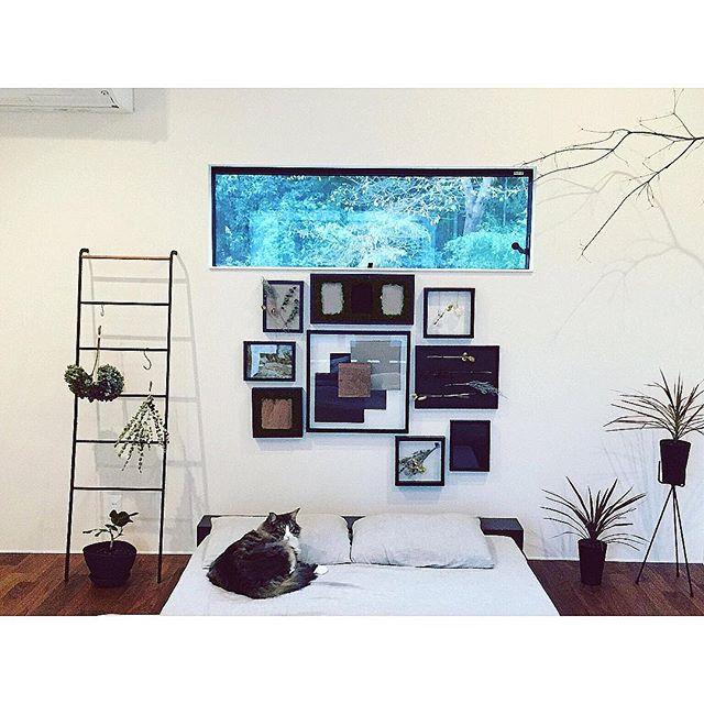 森の中で眠るイメージの寝室