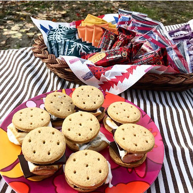 ピクニック用品 お菓子