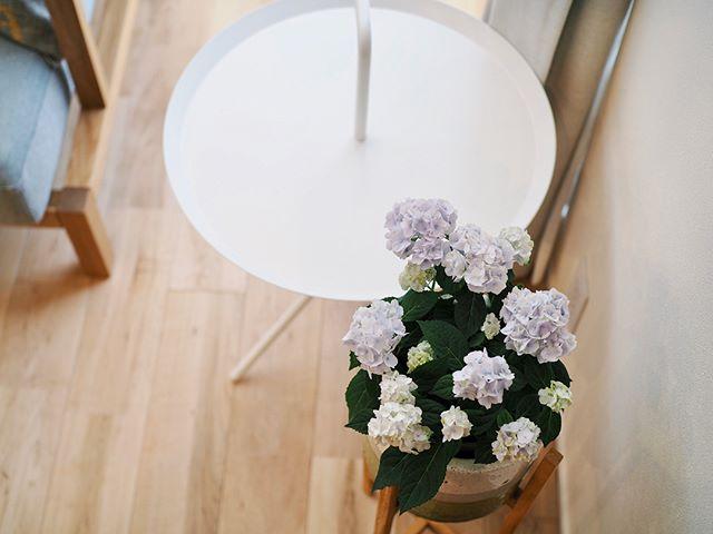 リビングテーブル15
