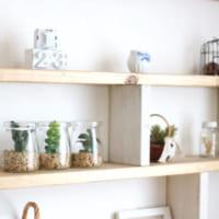 【ダイソー・セリア・キャンドゥ】のグリーンアイテム集!お部屋をもっとおしゃれに♪