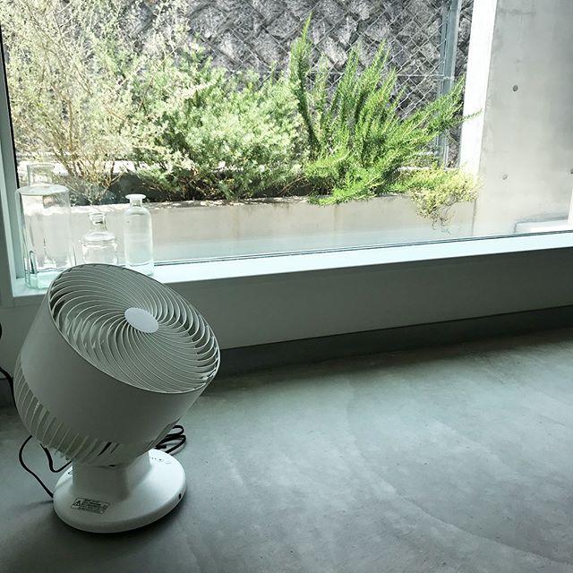 プラスマイナスゼロ 扇風機3