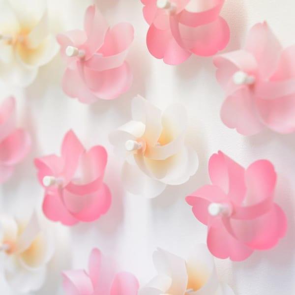 「Kaze guru ma 桜」