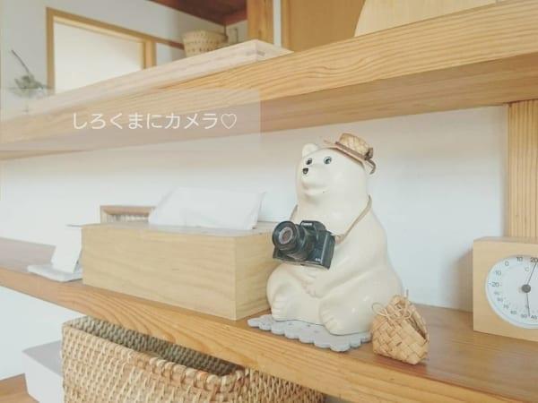 カメラと麦わら帽子①