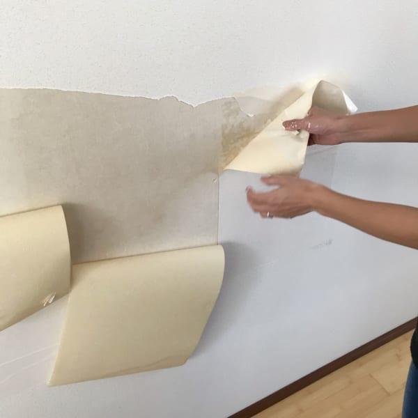 壁 穴 リメイクシート2