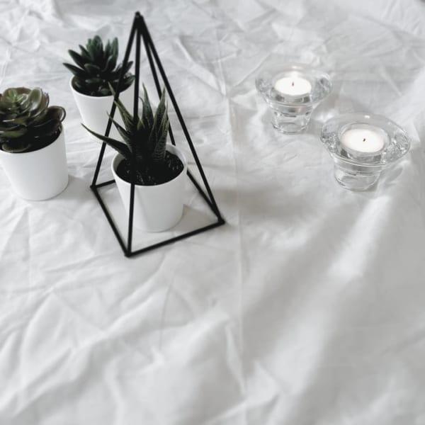 IKEA 人工観葉植物