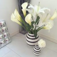 【百合(ユリ)の花言葉】純潔のシンボルといわれる花の由来&意外な色の意味とは