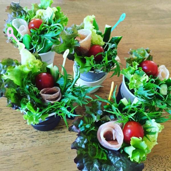 生ハムの花が咲く!鉢植え風サラダ