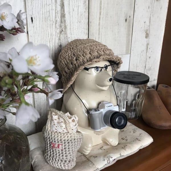 ハーフリムメガネとカメラ