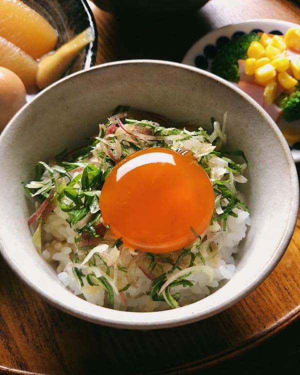 黄身の醤油漬けのっけご飯
