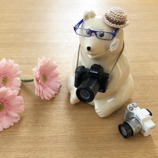 黒スクエアメガネとカメラと麦わら帽
